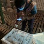 Tiga Jenis Alat Uji Sampel COVID-19 Tiba Di Indonesia