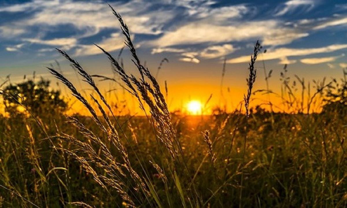 Manfaat Matahari Bagi Makhluk Hidup di Bumi