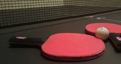 Pengertian Tenis Meja, Teknik, Peraturan dan Sejarahnya