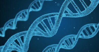 Pengertian Gen, Komponen, Fungsi, Sifat, dan Interaksi